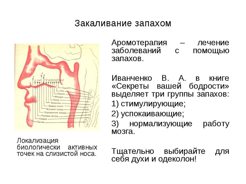 Закаливание запахом Аромотерапия – лечение заболеваний с помощью запахов. Ива...