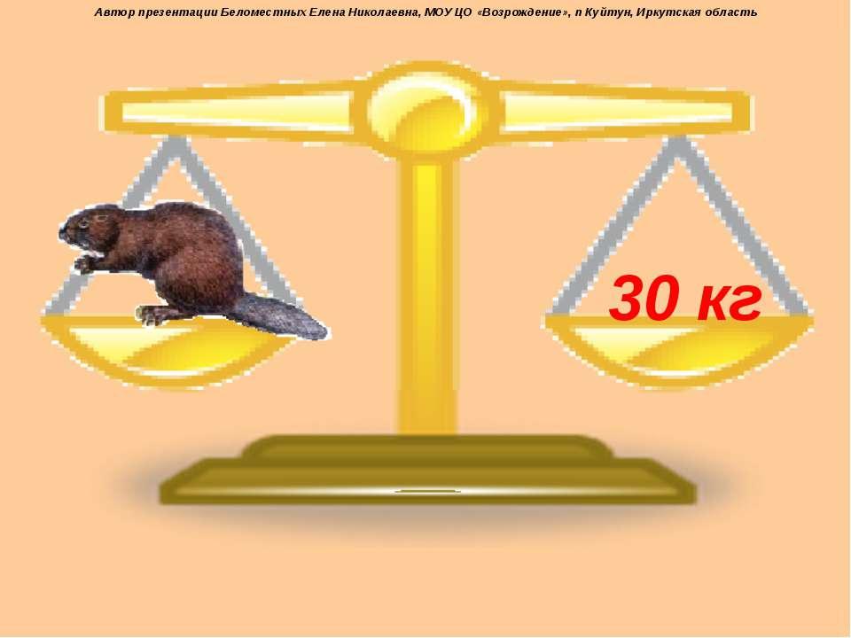30 кг Автор презентации Беломестных Елена Николаевна, МОУ ЦО «Возрождение», п...