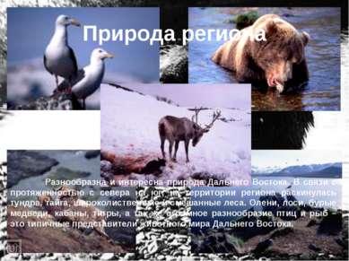 Природа региона Разнообразна и интересна природа Дальнего Востока. В связи с ...