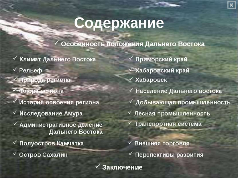 Содержание Климат Дальнего Востока Рельеф Природа региона Флора региона Истор...