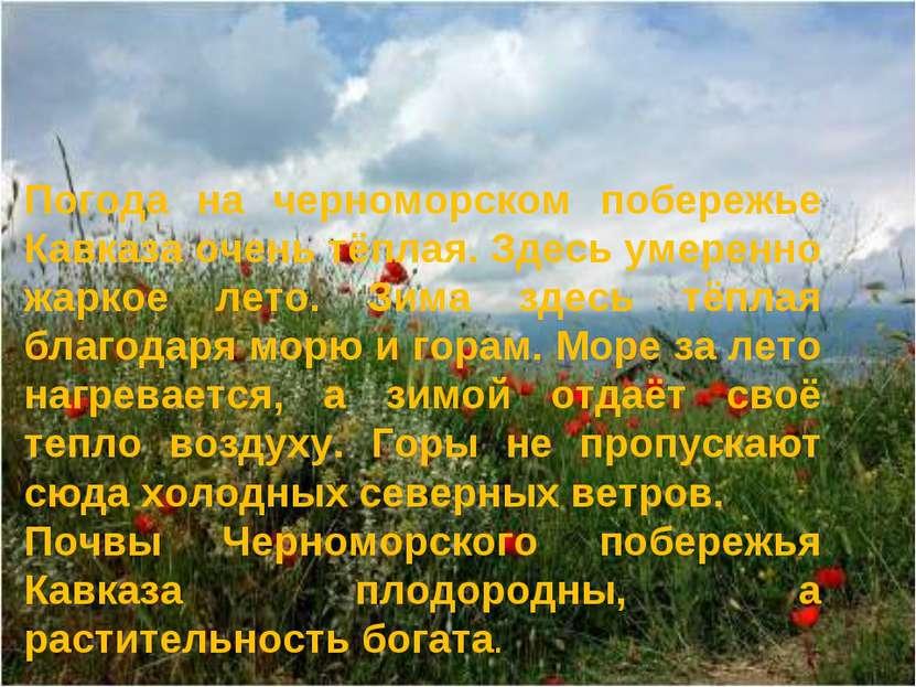Погода на черноморском побережье Кавказа очень тёплая. Здесь умеренно жаркое ...