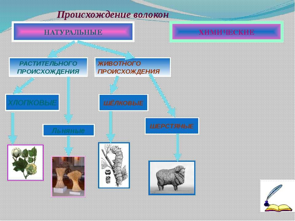 Происхождение волокон ХИМИЧЕСКИЕ НАТУРАЛЬНЫЕ ХЛОПКОВЫЕ ЖИВОТНОГО ПРОИСХОЖДЕНИЯ
