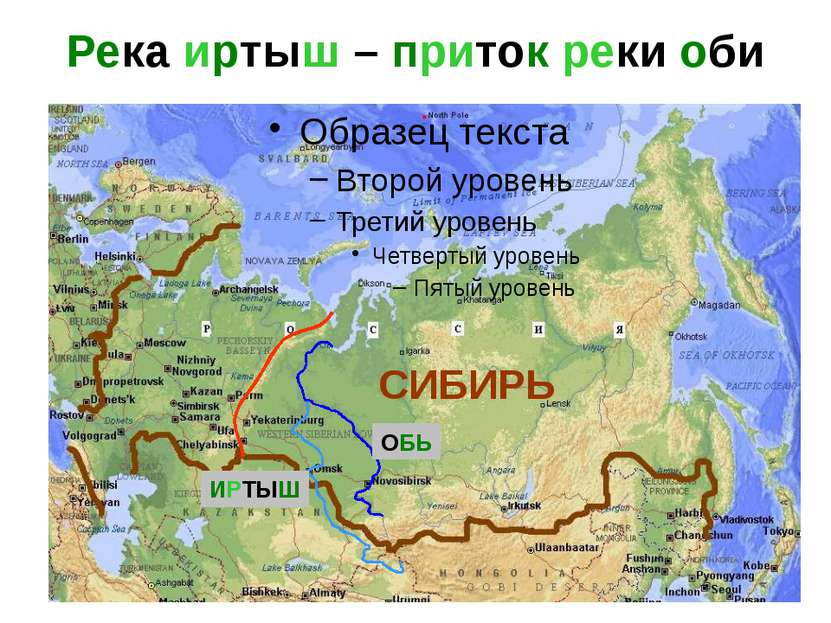Река иртыш – приток реки оби СИБИРЬ ОБЬ ИРТЫШ