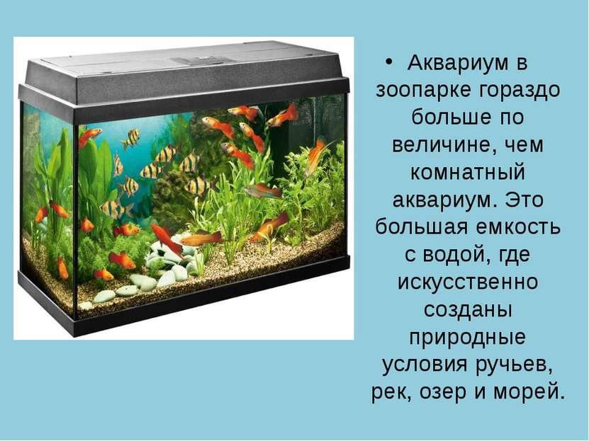 Аквариум в зоопарке гораздо больше по величине, чем комнатный аквариум. Это б...