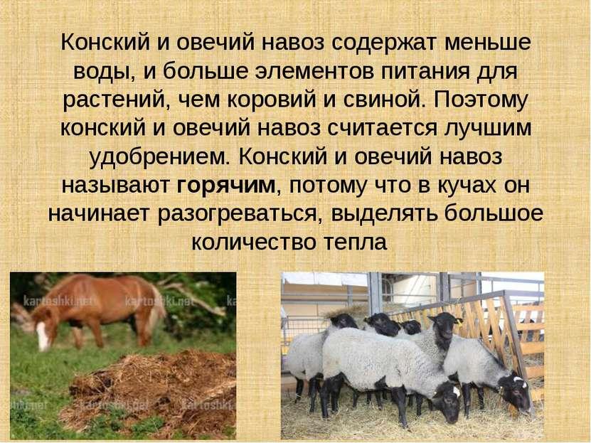 Конский и овечий навоз содержат меньше воды, и больше элементов питания для р...