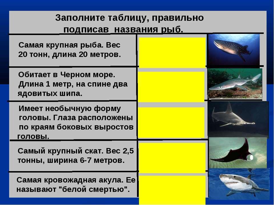 Заполните таблицу, правильно подписав названия рыб. Самая крупная рыба. Вес 2...