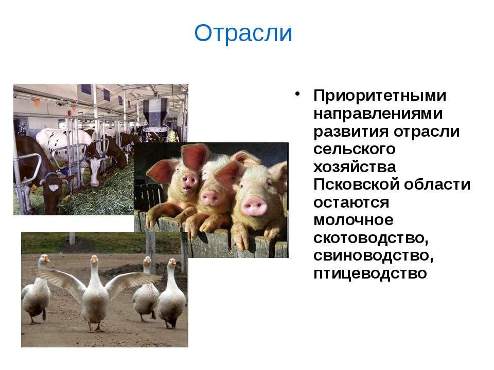 Отрасли Приоритетными направлениями развития отрасли сельского хозяйства Пско...