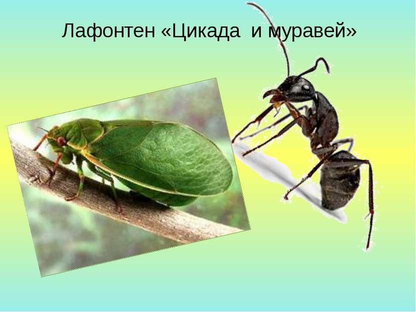 Лафонтен «Цикада и муравей»