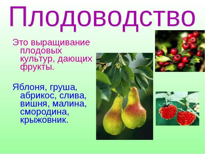 Это выращивание плодовых культур, дающих фрукты. Яблоня, груша, абрикос, слив...