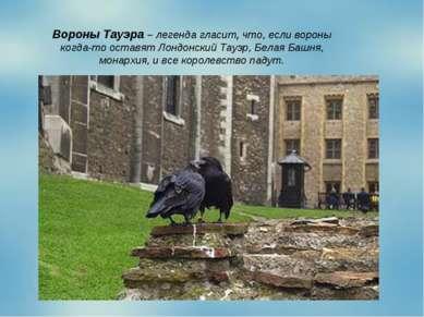 Вороны Тауэра – легенда гласит, что, если вороны когда-то оставят Лондонский ...