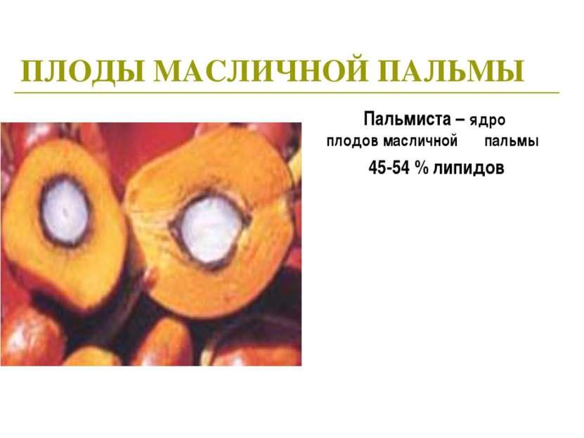 ПЛОДЫ МАСЛИЧНОЙ ПАЛЬМЫ Пальмиста – ядро плодов масличной пальмы 45-54 % липидов
