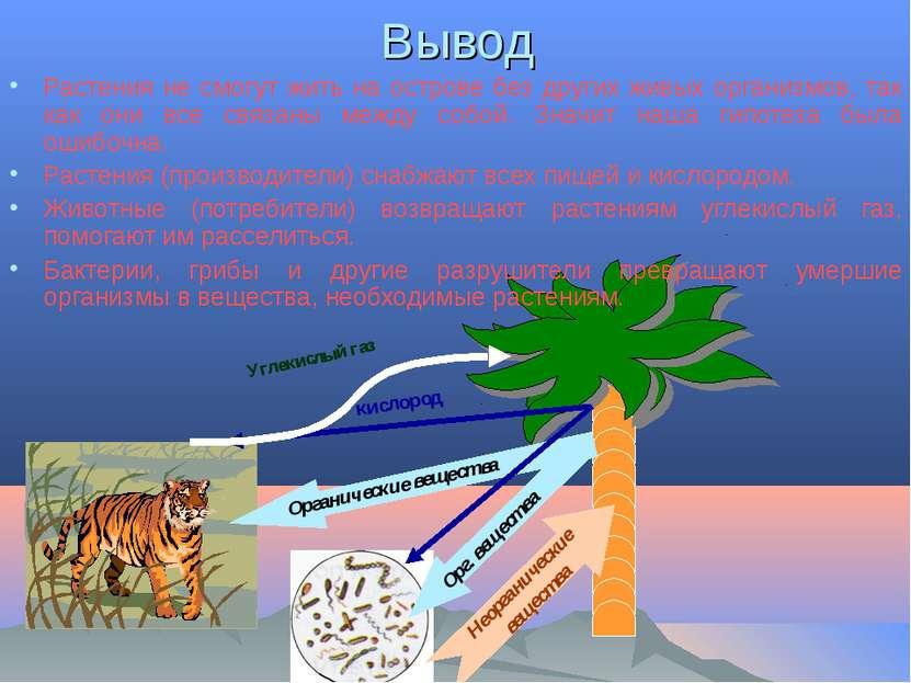 Вывод Растения не смогут жить на острове без других живых организмов, так как...