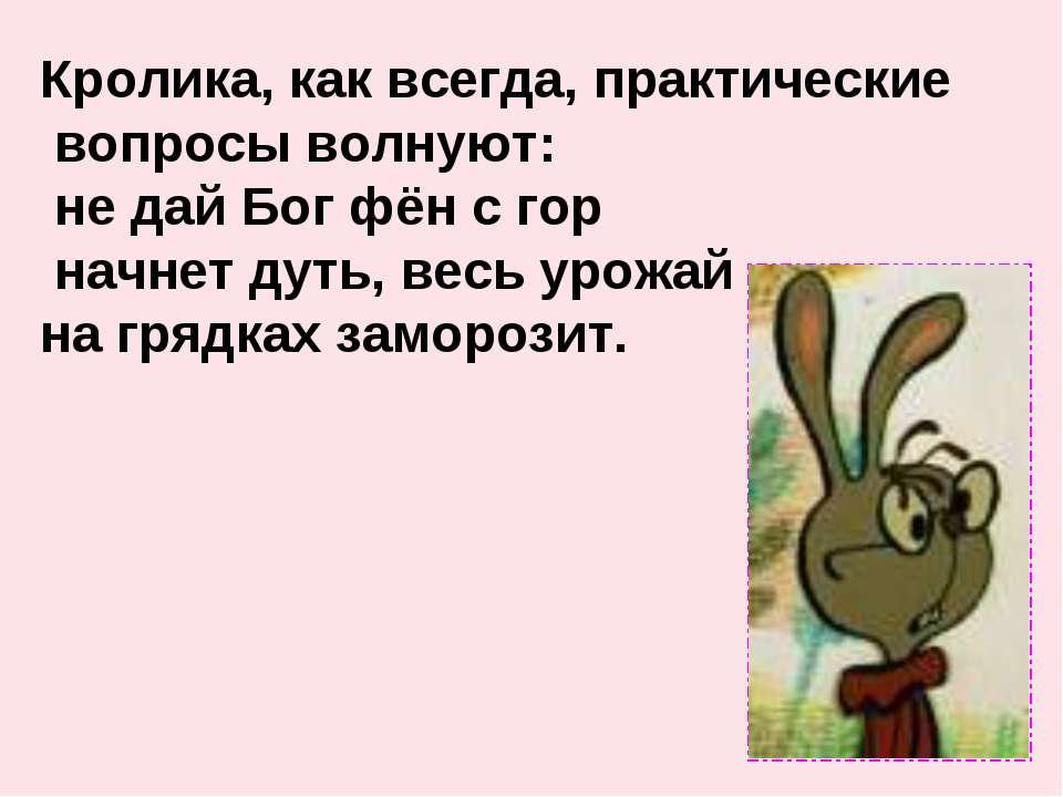 Кролика, как всегда, практические вопросы волнуют: не дай Бог фён с гор начне...