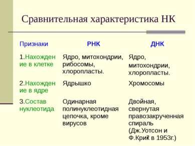 Сравнительная характеристика НК Признаки РНК ДНК 1.Нахождение в клетке Ядро, ...