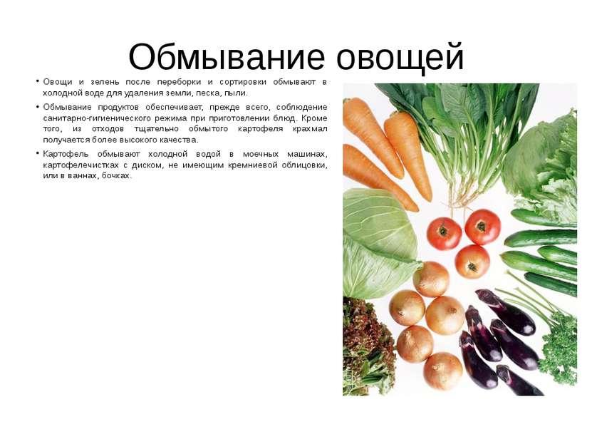 Обмывание овощей Овощи и зелень после переборки и сортировки обмывают в холод...