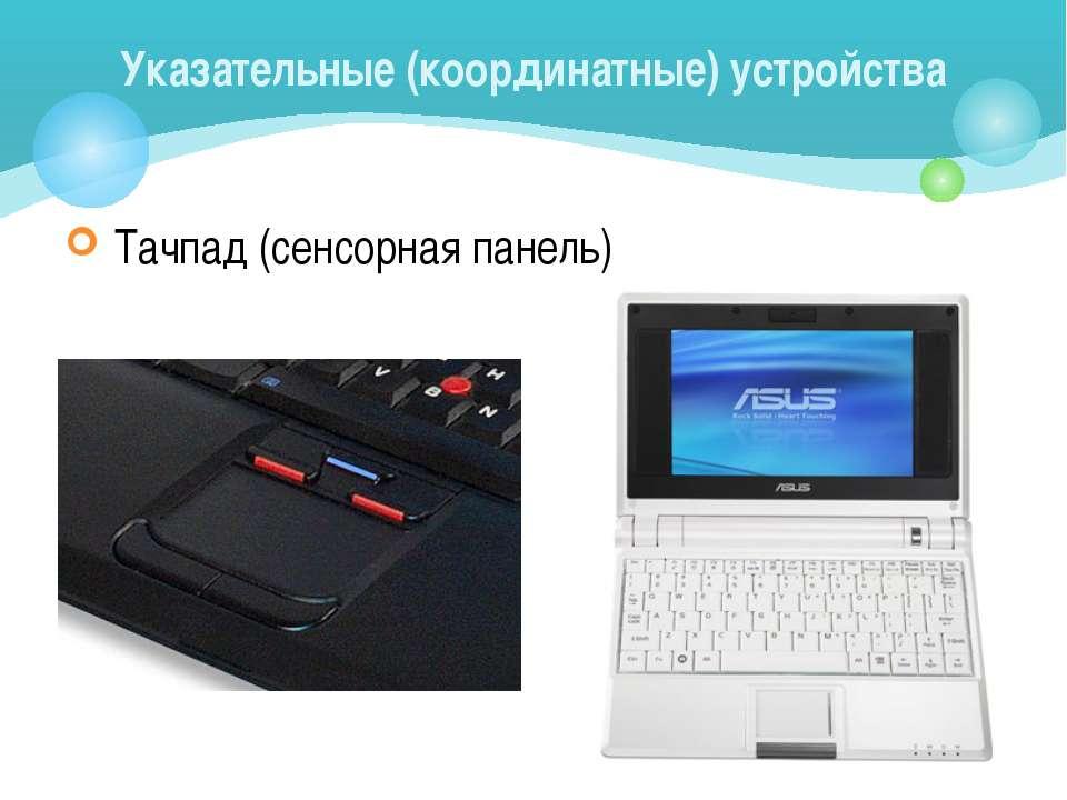 Тачпад (сенсорная панель) Указательные (координатные) устройства