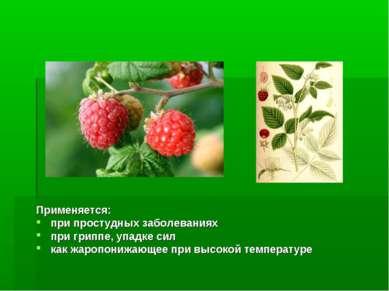 Применяется: при простудных заболеваниях при гриппе, упадке сил как жаропониж...