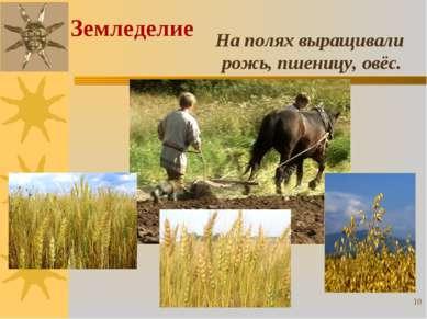 На полях выращивали рожь, пшеницу, овёс. Земледелие *