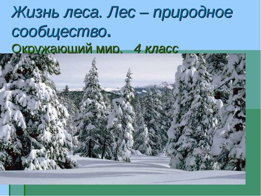 Жизнь леса. Лес – природное сообщество. Окружающий мир. 4 класс
