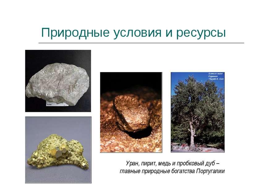 Природные условия и ресурсы