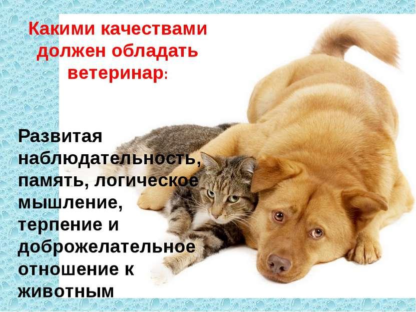 Какими качествами должен обладать ветеринар: Развитая наблюдательность, памят...