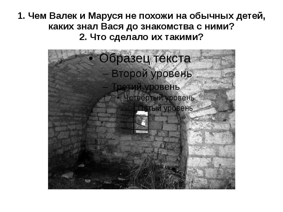 1. Чем Валек и Маруся не похожи на обычных детей, каких знал Вася до знакомст...