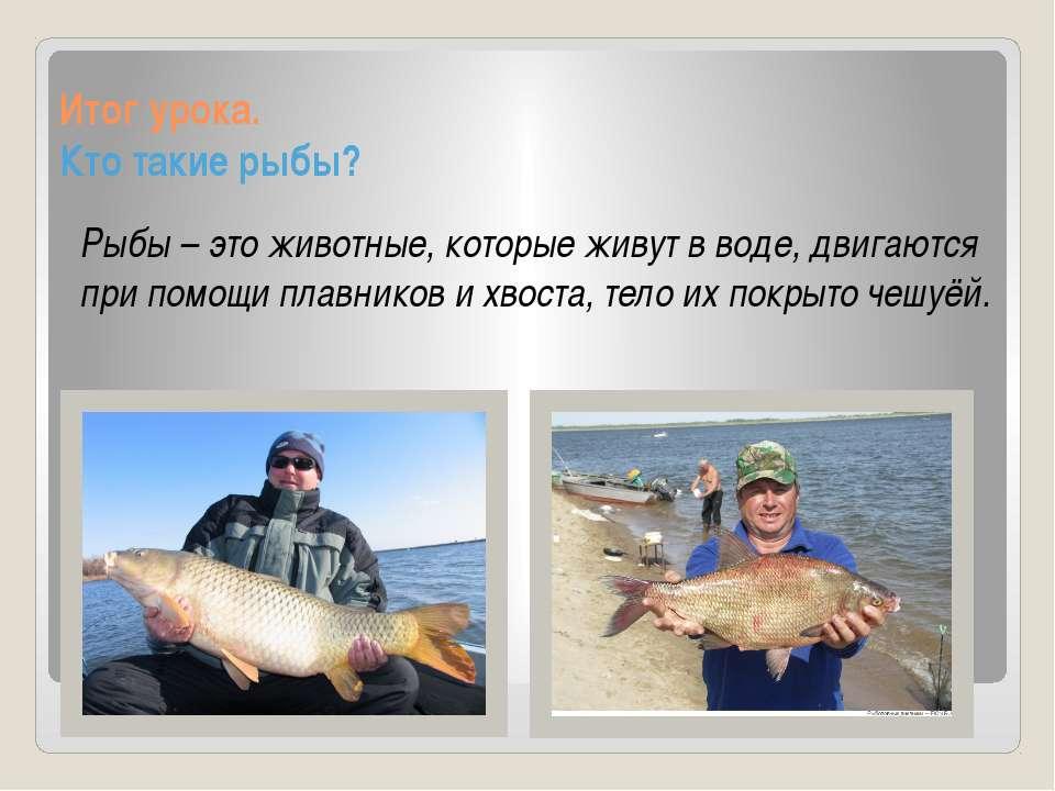 Итог урока. Кто такие рыбы? Рыбы – это животные, которые живут в воде, двигаю...