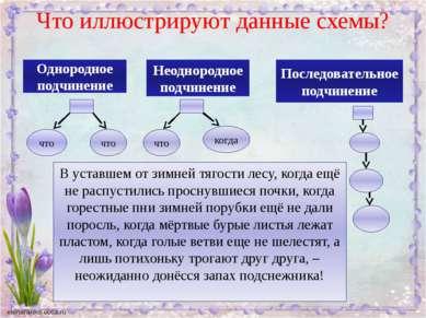 Что иллюстрируют данные схемы? Однородное подчинение что что Неоднородное под...