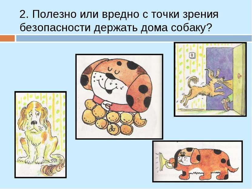2. Полезно или вредно с точки зрения безопасности держать дома собаку?