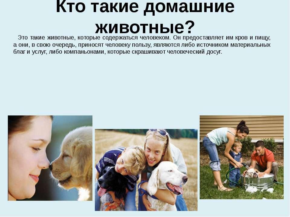 Кто такие домашние животные? Это такие животные, которые содержаться человеко...