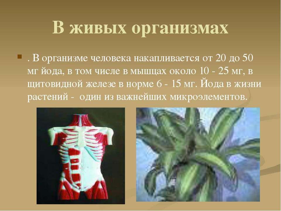 В живых организмах . В организме человека накапливается от 20 до 50 мг йода, ...