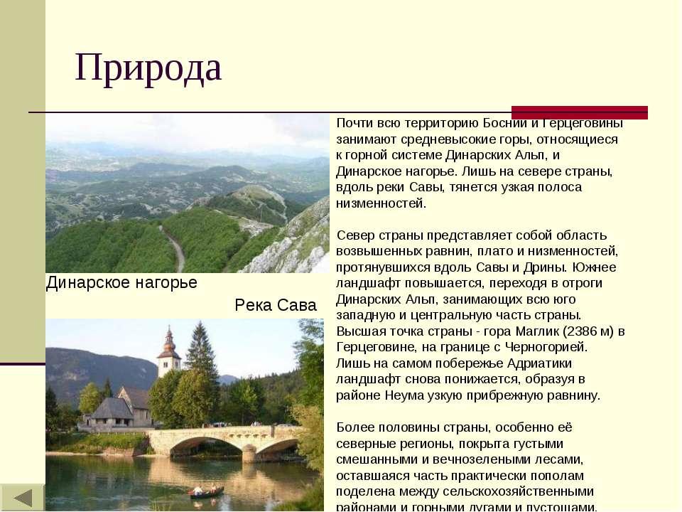 Природа Почти всю территорию Боснии и Герцеговины занимают средневысокие горы...