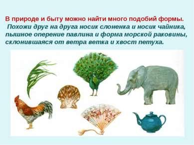 В природе и быту можно найти много подобий формы. Похожи друг на друга носик ...