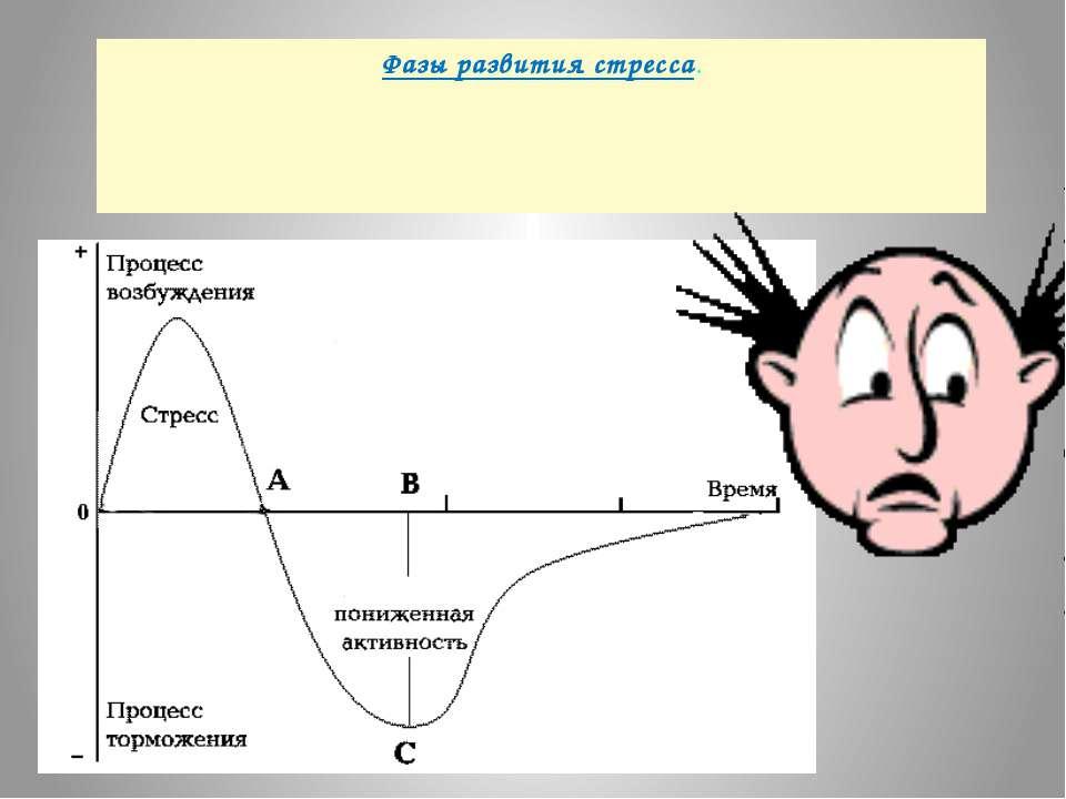 Фазы развития стресса.