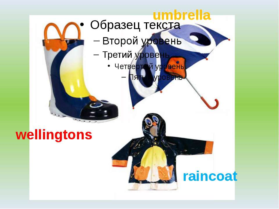 wellingtons umbrella raincoat