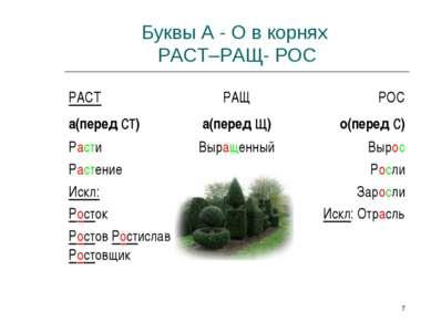 * Буквы А - О в корнях РАСТ–РАЩ- РОС РАСТ а(перед ст) Расти Растение Искл: Ро...