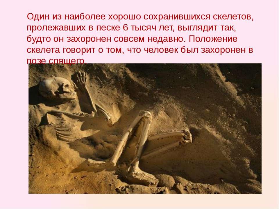Один из наиболее хорошо сохранившихся скелетов, пролежавших в песке 6 тысяч л...