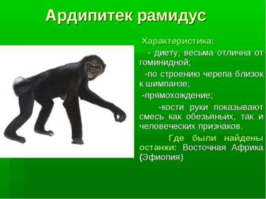 Ардипитек рамидус Характеристика: - диету, весьма отлична от гоминидной; -по ...
