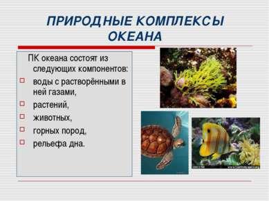ПРИРОДНЫЕ КОМПЛЕКСЫ ОКЕАНА ПК океана состоят из следующих компонентов: воды с...