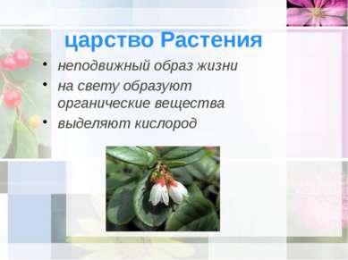 царство Растения неподвижный образ жизни на свету образуют органические вещес...