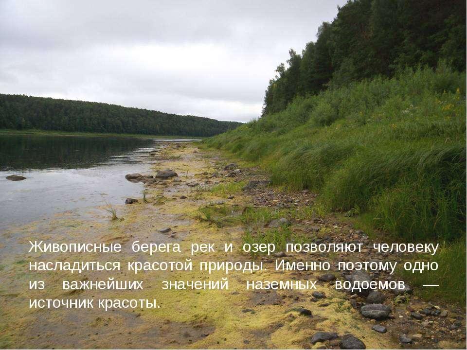 Живописные берега рек и озер позволяют человеку насладиться красотой природы....