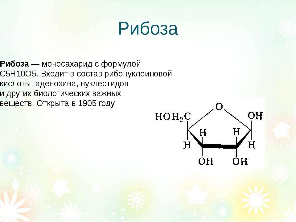 Рибоза Рибоза— моносахарид с формулой С5Н10О5. Входит в состав рибонуклеинов...