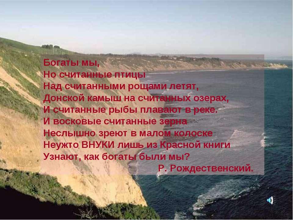 Богаты мы, Но считанные птицы Над считанными рощами летят, Донской камыш на с...