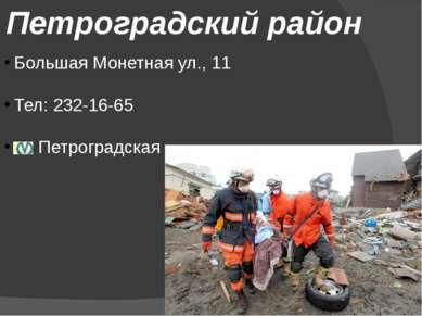Петроградский район Большая Монетная ул., 11 Тел: 232-16-65 Петроградская