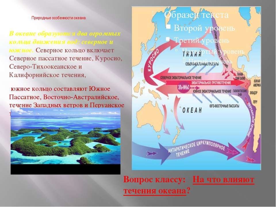 Природные особенности океана. В океане образуются два огромных кольца движени...