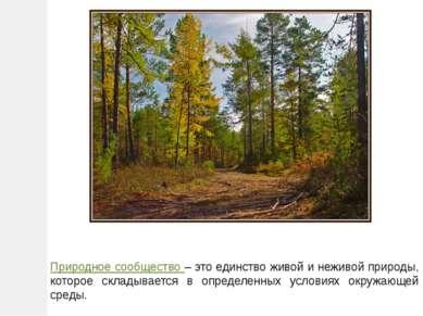 Природное сообщество – это единство живой и неживой природы, которое складыва...