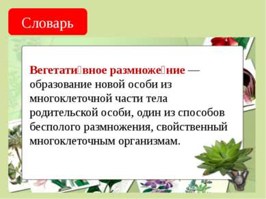 Словарь Вегетати вное размноже ние — образование новой особи из многоклеточно...