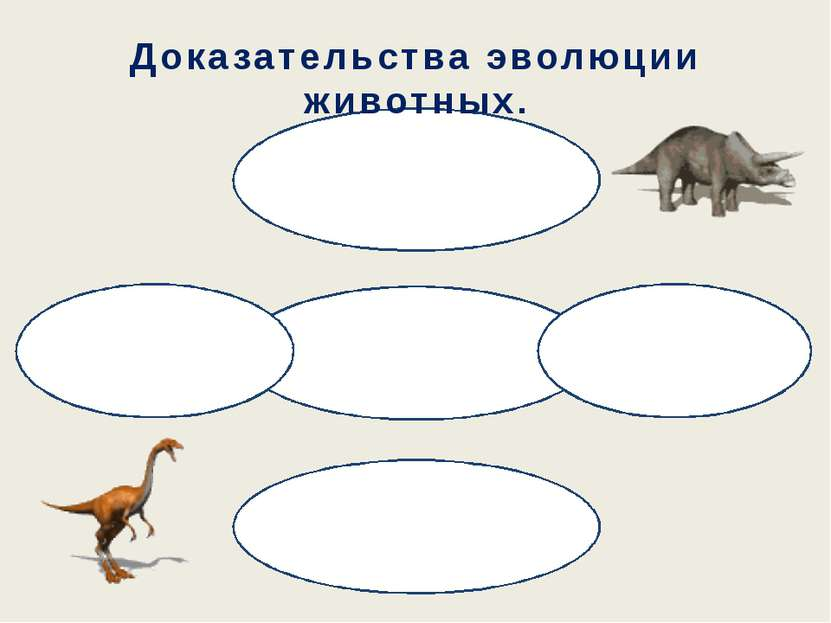 Доказательства эволюции животных.