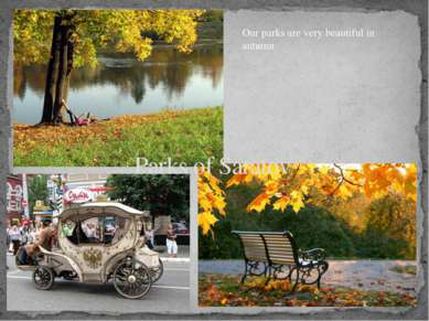 Parks of Saratov Our parks are very beautiful in autumn