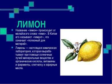 ЛИМОН Название «лимон» происходит от малайского слова «лемо». В Китае его наз...